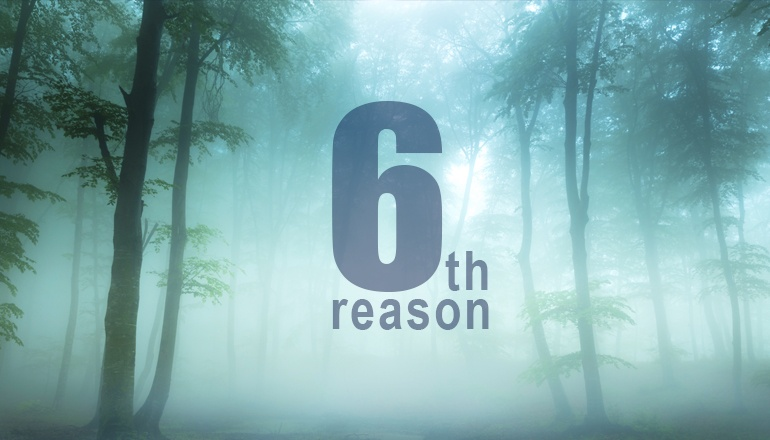 Day 5: Sixth Reason Why a TAP is Better Than a SPAN | Niagara Networks